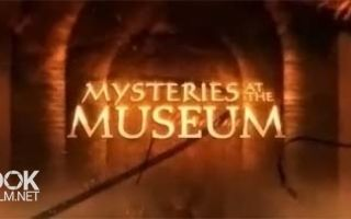 Видео экскурсия по метрополитен музею