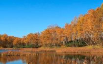 «золотая осень» — описание картины, исаак левитан