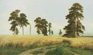Описание картины «рожь», шишкин, 1878