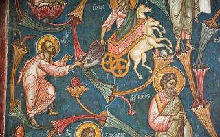 «пророк елисей», джорджо вазари — описание картины