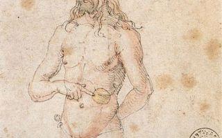 Альбрехт дюрер — биография и картины художника