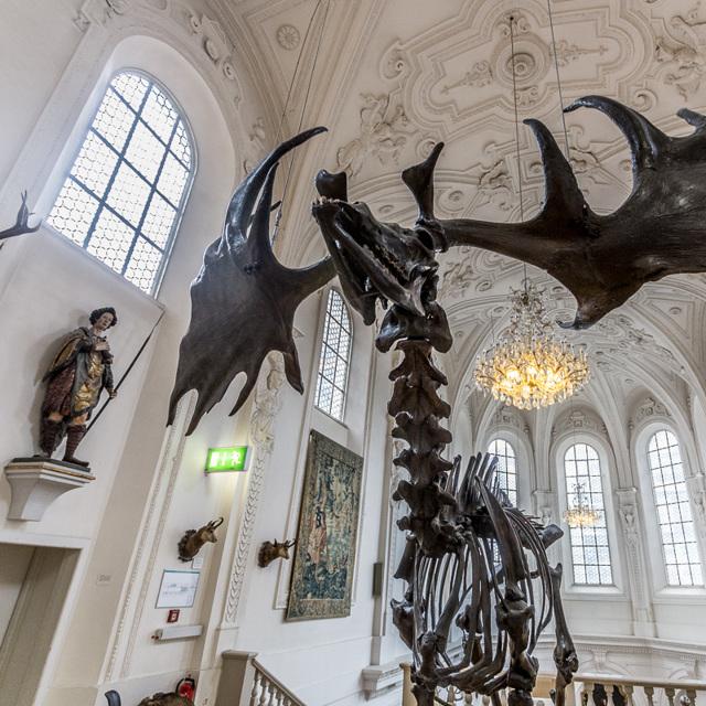 Музей охоты и рыболовства в Мюнхене