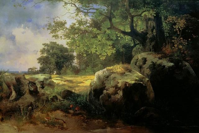 Камень в лесу у