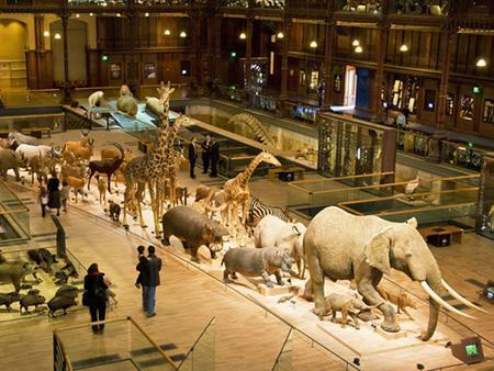 Комплекс музеев естествознания в Барселоне, Испания