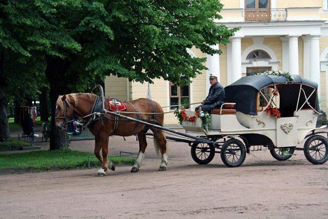 Провести выходные дни в Петербурге:  куда пойти, что посмотреть, где поужинать ?