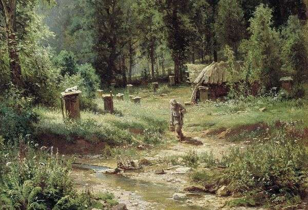 Описание картины Шишкина Дубовая роща, 1887