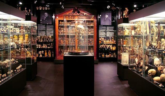 Музей татуировок в Амстердаме