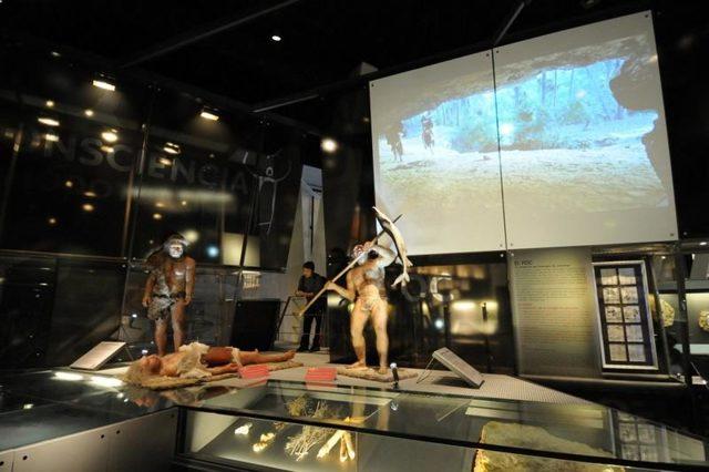 Научно-познавательный музей cosmocaixa, Барселона