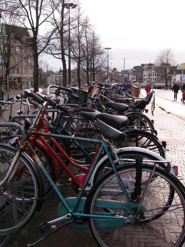 Что предлагает туристам Амстердам в декабре