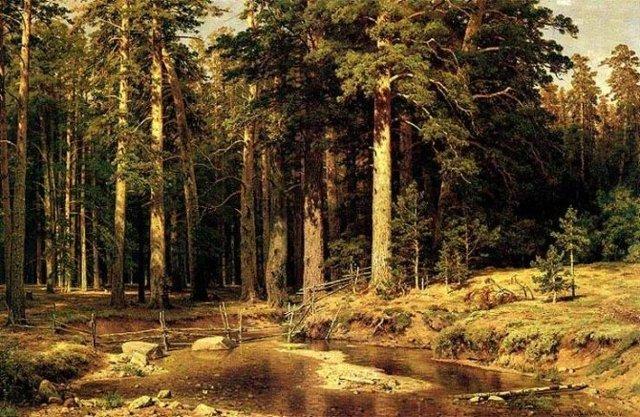 На острове Валааме, Шишкин, 1881