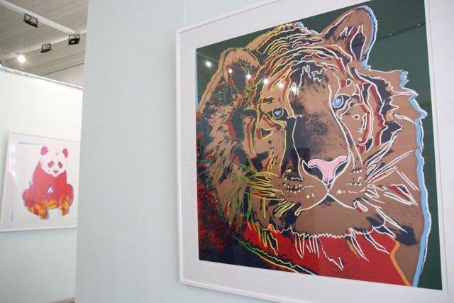 «Зебра», Энди Уорхол — описание картины