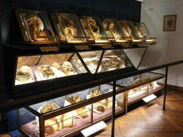 Музей пыток, Гаага