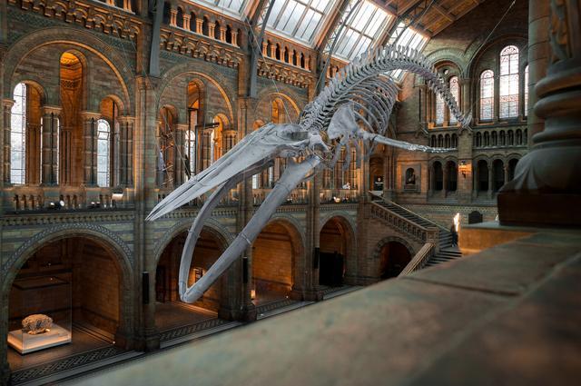Музей мадам Тюссо в Лондоне - купить билеты