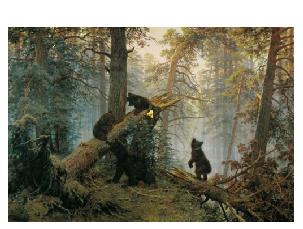 Картина «Сосновый лес», Шишкин — Описание и ВидеоОбзор