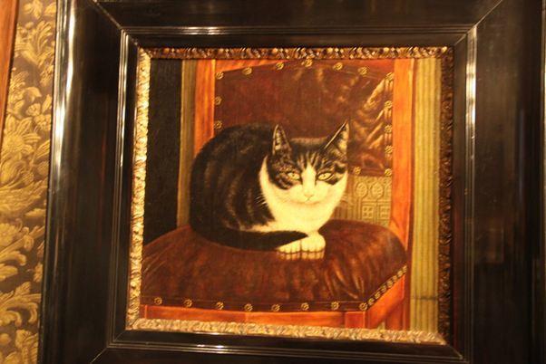 Музей кошек в Амстердаме